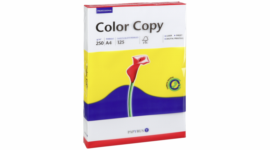 Color Copy A 4, 250 g 125 listu, bila, trpytivy